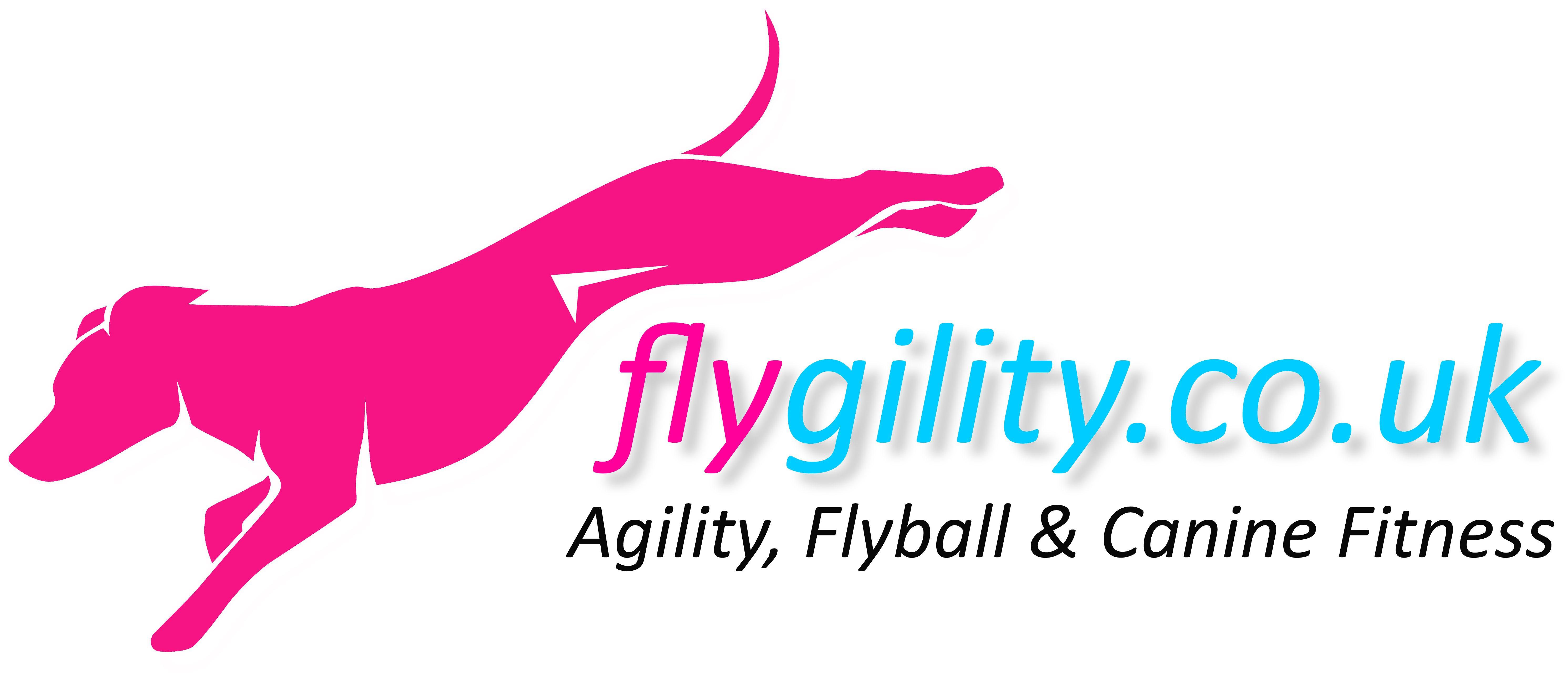 flygility